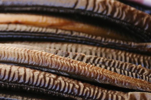 Ambachtelijk gerookte paling