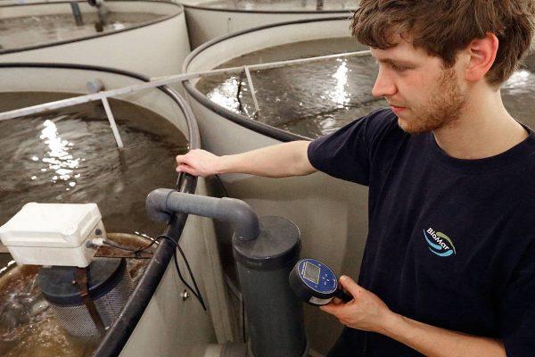 Veiligheidscontrole bij paling kweken